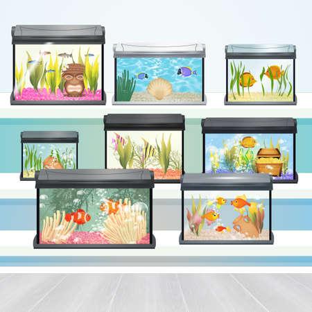 illustration of aquarium shop