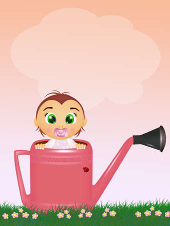baby female in the watering can Banco de Imagens