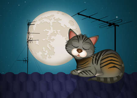 Illustration of cat on the roof in the moonlight