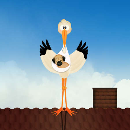 illustration of stork brings the puppy dog on the roof