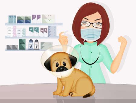illustration of vet dog Zdjęcie Seryjne