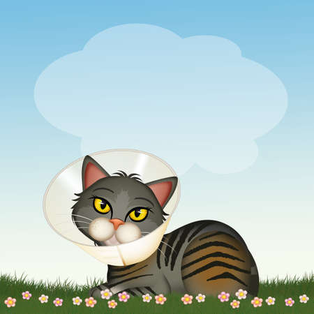funny illustration of cat with funnel collar Zdjęcie Seryjne - 155620488