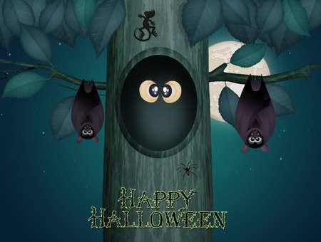 owl eyes on Halloween night