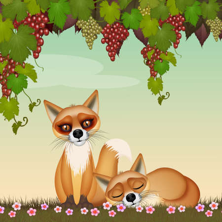 illustration of foxes under the grapes