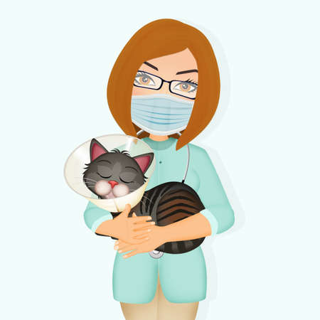 illustration of cat spaying or neutering