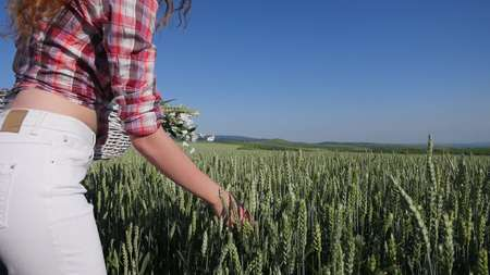 Young woman walking with basket with flowers a wheat field with blue sky on the background.