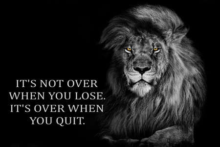 Inspirational Motivational quote, it's not over when you lose it's over when you quit, lion Standard-Bild