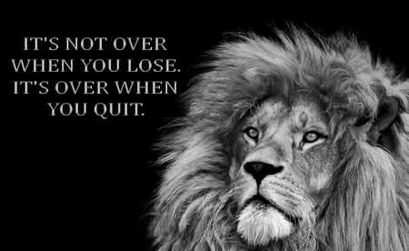 Inspirational Motivational quote, it's not over when you lose it's over when you quit, Standard-Bild