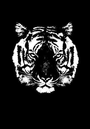 Tiger silhouete, animal isolated, wildlife hunter power