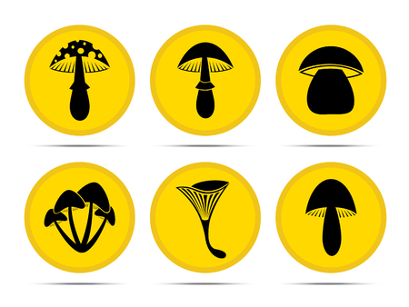 food poison: Set vector mushroom  icons  on a white background.