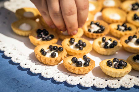 blueberry pie: piezas de deliciosa tarta de ar�ndanos casera Foto de archivo