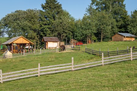 fense: pasture with fence for animals in the countryside in the middle of Europe Stock Photo