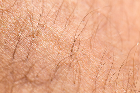 detail of human skin with hair, close-up Stock Photo