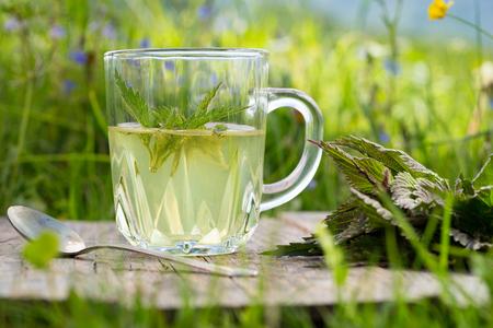 적합: Tea from nettle. Fresh spring nettle. Suitable for salad, tea or use in cosmetics.
