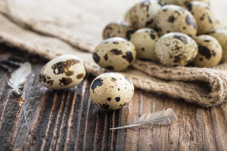 Organic quail eggs and jute bags. Natural gourmet meal.