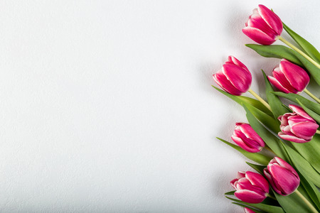 Fresh tulip flowers on a white table looking from the top.