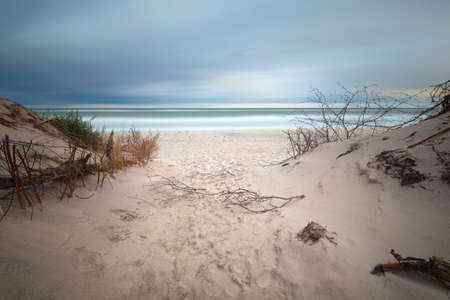 Slovenian national park, Leba sand dune on the Baltic coast