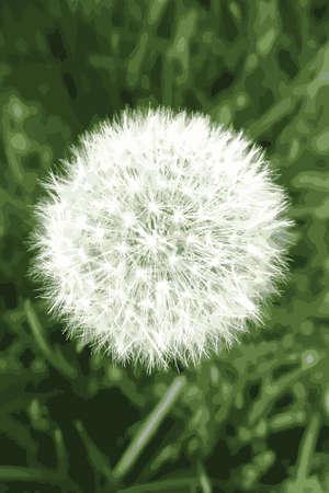 Dandelion imagen puff