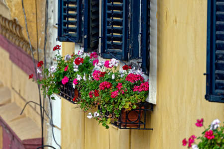 architectural tradition: Old Town Sibiu Romania with flowers at windows view from Liars Bridge