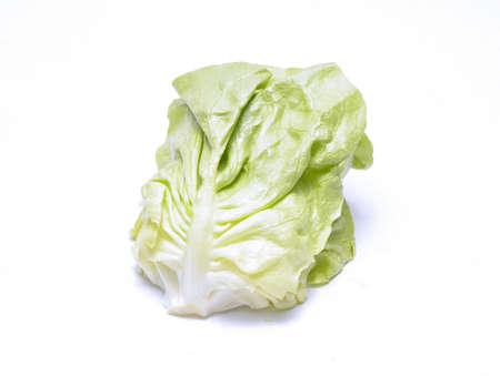 gentile: lettuce leaves isolated on white background