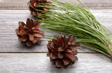 decorate: Pine cones on wooden background