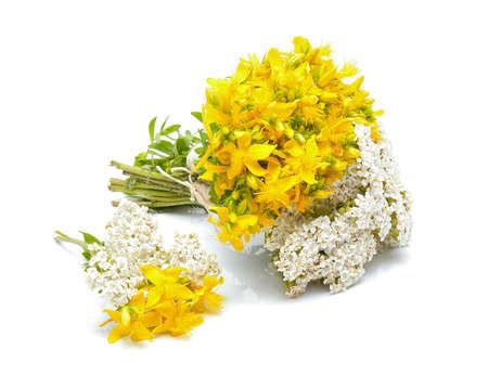 Hypericum flowers and yarrow flowers