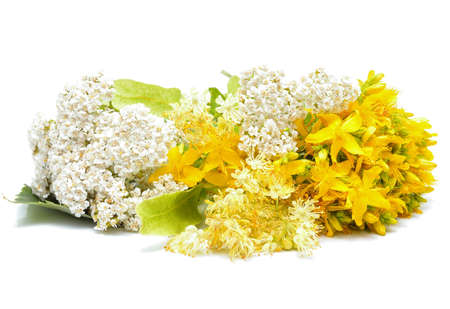 milfoil: Hypericum flowers, linden flowers and yarrow flowers