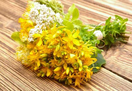 yarrow: Hypericum flowers and yarrow flowers