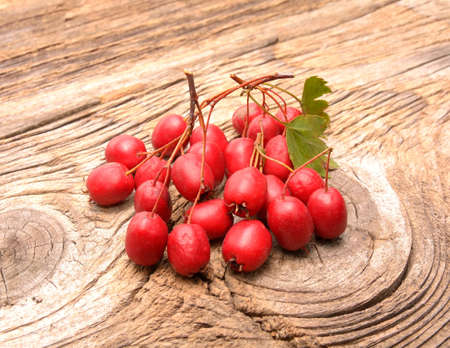 Hawthorn berries on wooden background