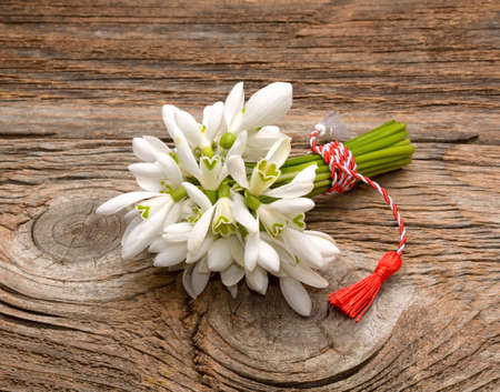 Bouquet of snowdrops on wooden background