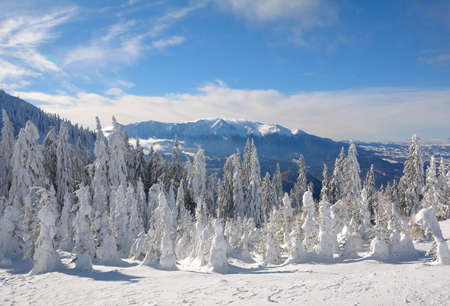 Panoramic view of Bucegi Mountains, Carpathian Mountain Range 写真素材
