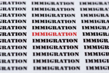 naturalization: The word IMMIGRATION highlighted in red amongst similar black text