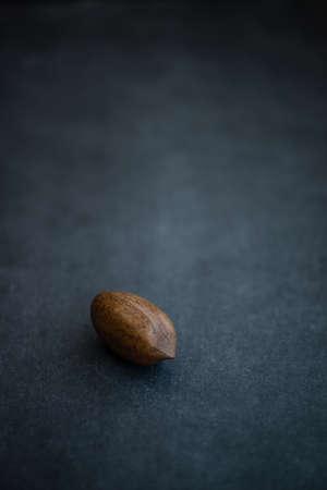 Single Pecan nut on dark background