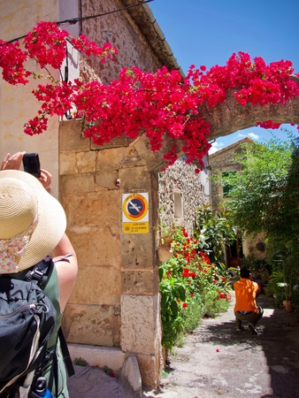 Woman with a sun hat taking a mobile phone photograph Colourful flowers on a wall in an over the shoulder view
