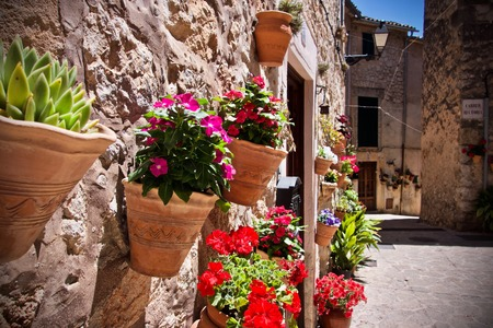 Colourful spring flowers in terracotta pots mounted on a garden wall on a patio with petunias and red geraniums in an oblique angle view