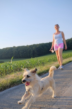 Woman with a dog walking down a gravel street in a country field in a scenic landscape conceptual of a summer seasons Stok Fotoğraf
