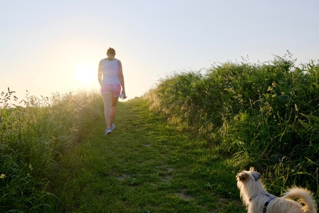 Woman Silhouette with a dog walking up a gravel path at sunset against the sun and a country field in a scenic landscape conceptual of a summer seasons Stok Fotoğraf