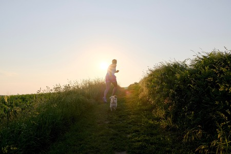 Woman Silhouette with a dog running up a gravel path at sunset against the sun and a country fiel in a scenic landscape conceptual of the summer seasons