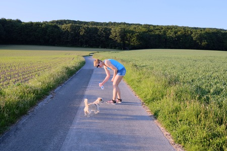 watering a dog by a woman on a gravel path at sunset against the sun and a country field in a scenic landscape conceptual of a summer seasons Stok Fotoğraf
