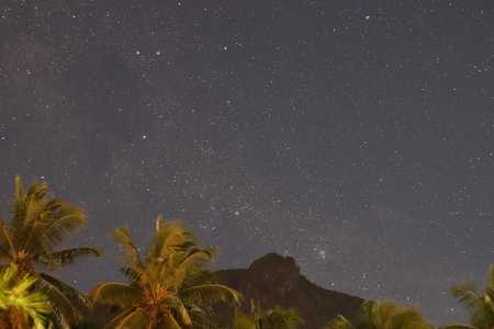 Tropical landscape with mountains, starscape and palms.