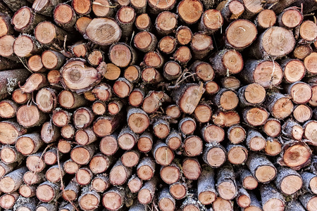 Round wooden logs stacked under house.