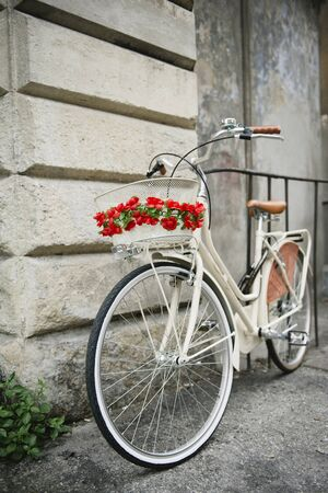 stationary bike: White bicycle with redflowers parked against a wall in Pisa, Italy.