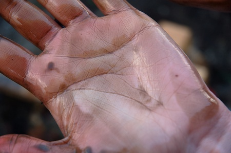 Womans hand dirty of oil after cleaning the beach of an oil spill photo