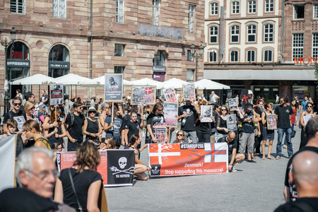dissent: STRASBOURG, FRANCE - AUG 22, 2015: Marine conservation non-profit organization Sea Shepherd protesting against the slaughter of pilot whales and arrest of 7 crew members - solidarity protest