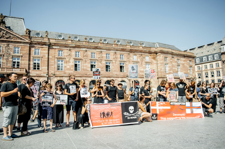 outcry: STRASBOURG, FRANCE - AUG 22, 2015: Marine conservation non-profit organization Sea Shepherd protesting against the slaughter of pilot whales and arrest of 7 crew members - people protesting Editorial