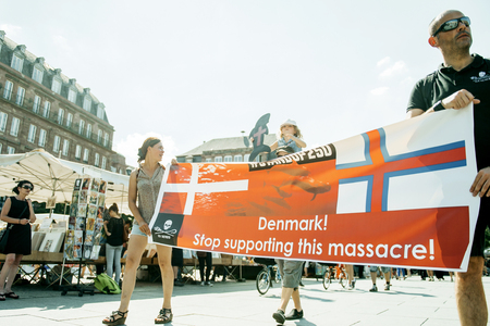 dissent: STRASBOURG, FRANCE - AUG 22, 2015: Marine conservation non-profit organization Sea Shepherd protesting against the slaughter of pilot whales and arrest of 7 crew members - placard against Denmark