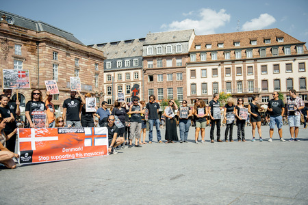 outcry: STRASBOURG, FRANCE - AUG 22, 2015: Marine conservation non-profit organization Sea Shepherd protesting against the slaughter of pilot whales and arrest of 7 crew members - solidarity protest