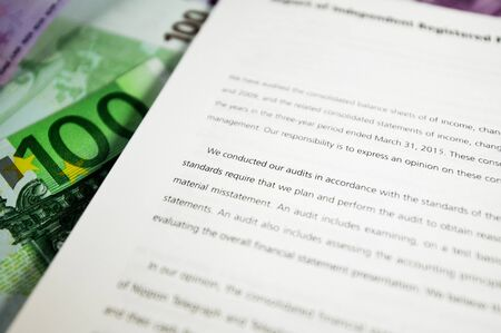 auditors: Audit report detail next to european currency