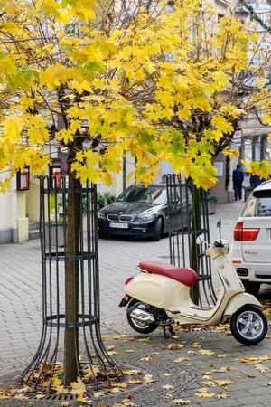 vespa piaggio: Baden-Baden, Germania - 20 NOVEMBRE 2014: Vespa scooter in citt� europea sotto l'albero giallo in attesa di essere cavalcata Editoriali