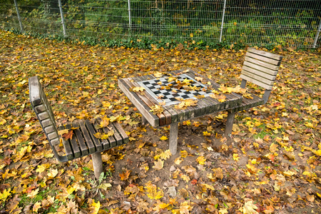 foiliage: Chess table in autumn park covered with autumn leaves